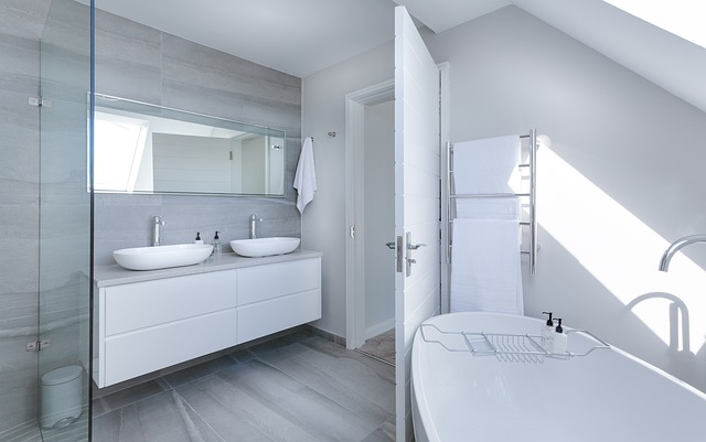 modern-minimalist-bathroom-3115450_640